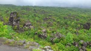 雲に隠れるところまで溶岩が広がる。